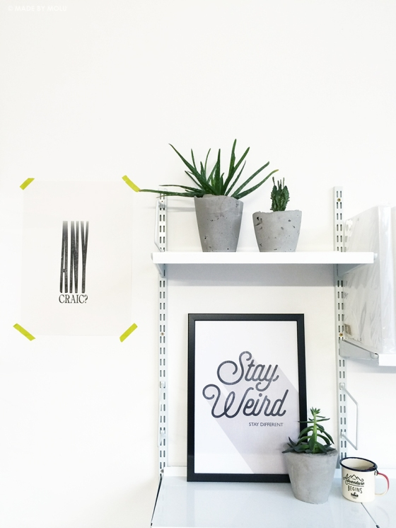 MbM_URBAN-JUNGLE-PLANT SHELFIE 01