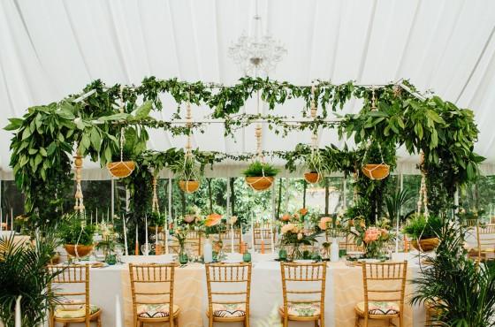 tropics-wedding-01